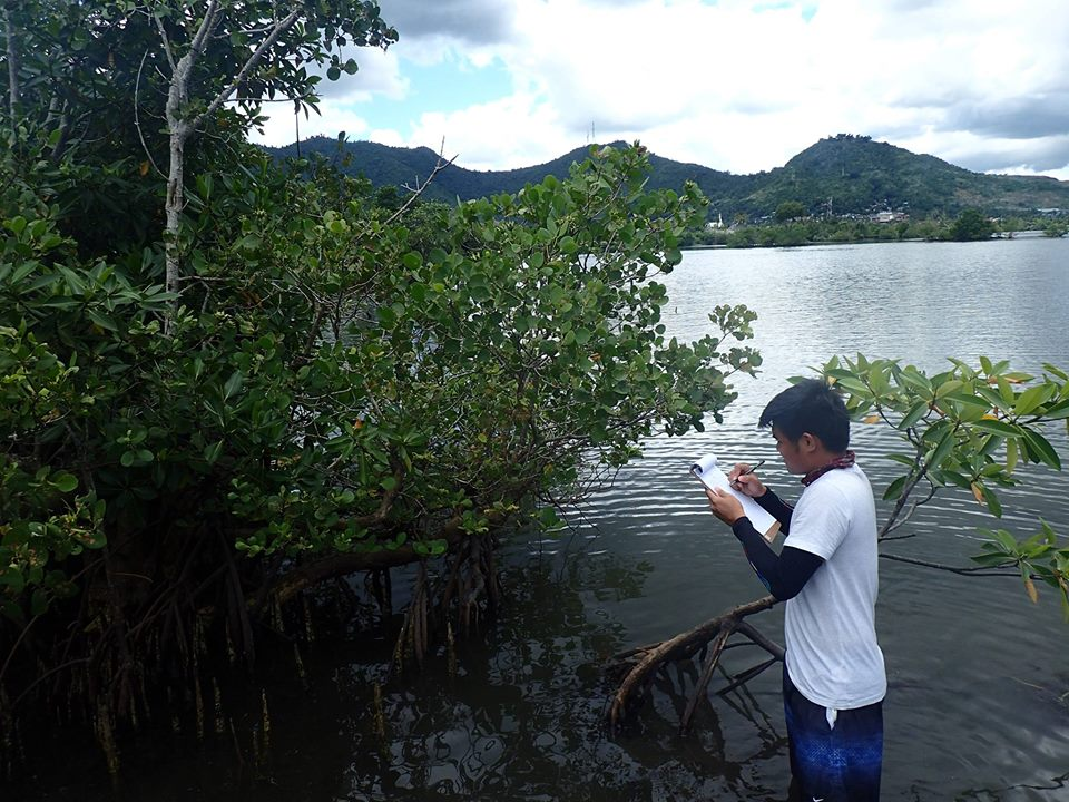 CEC's resident biologist Julius Gopez documents mangrove forests along the coastlines of Tacloban, Palo, and Tanauan that most likely will be affected by the project. Most of these forests are rehabilitated under the Leyte Gulf Rehabilitation Project.